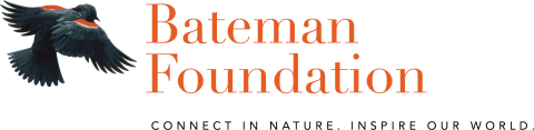 Bateman Foundation